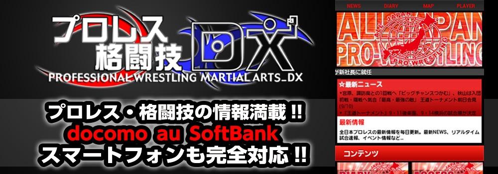 プロレス格闘技DX